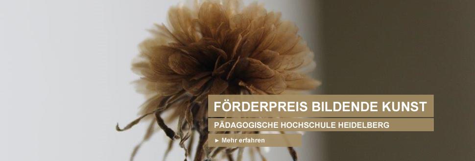 In Zusammenarbeit mit der PH Heidelberg